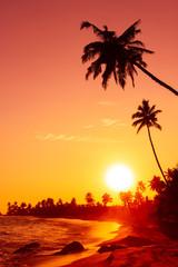 Warm sunset on tropical ocean beach