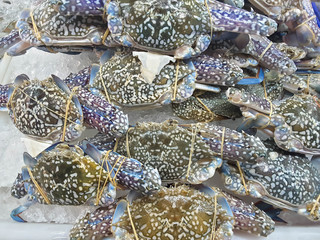 Crabs raw fresh in market, seafood