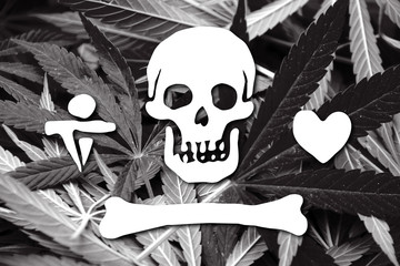 Stede Bonnet Pirate Flag, on cannabis background