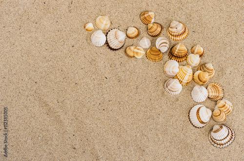 muscheln sand strand sommerurlaub stockfotos und. Black Bedroom Furniture Sets. Home Design Ideas