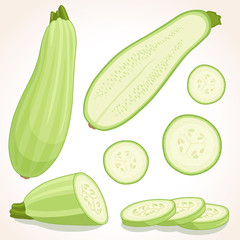 Fresh zucchini isolated on background. Vector illustration. Squash whole, half and sliced.