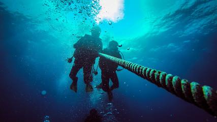 Scuba Diving Wall mural
