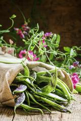 Green beans for lobio, selective focus