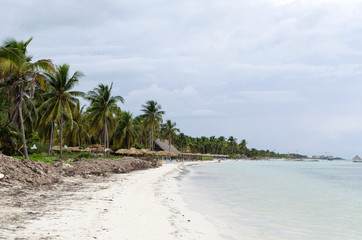 View of tropical beach in Cayo Guillermo - Ciego de Avila Province, Cuba.
