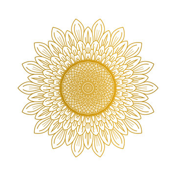 Sunflower illustration vector