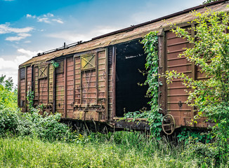 Old railway wagon derelict captured by vegetation.