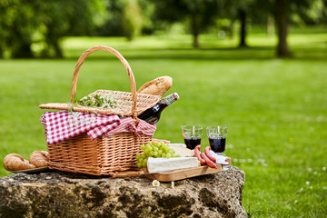 Elegant picnic with red wine, cheese and sausages