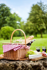 Tasty spring picnic lunch with red wine