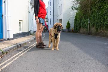 Woman walking puppy in small village