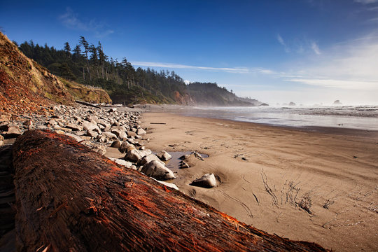 Indian Beach at Ecola State Park on the Oregon coast.