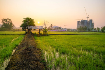 Construction site in the middle of a green farmland on the sun rise sky