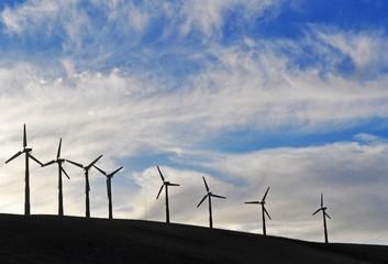 California: una fila di turbine eoliche in un campo il 16 giugno 2010. La California è ricca di turbine eoliche, che convertono l'energia del vento in energia verde