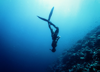Photo sur Plexiglas Plongée Freediver swim in the sea