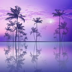 Wall Mural - Exotic tropical palm tree landscape   at sunset or moonlight, wi