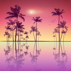 Wall Mural - Landscape of tropical palm trees  at sunset or moonlight, with r