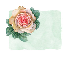Watercolor illustration of rose flowers. Perfect for greeting card
