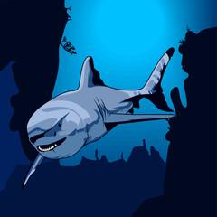 vector illustration of shark on the depth of the ocean