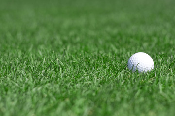 green grass and golfball