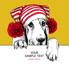 Basset Hound dog in a Hat with pom-pom. Vector illustration.