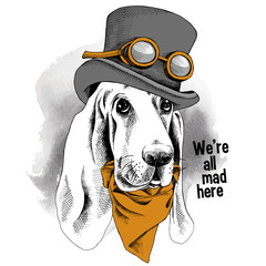 The image of the portrait dog Basset Hound wearing the steampunk hat and the cravat. Vector illustration.