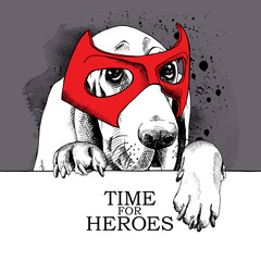 The poster with the portrait of the dog Basset Hound wearing the mask of hero. Vector illustration.
