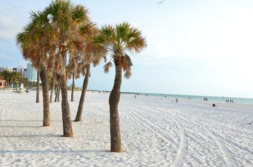 Strand von Clearwater Beach