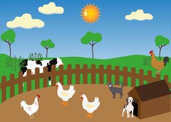 Animal at farm: chicken, dog, cat, cow.