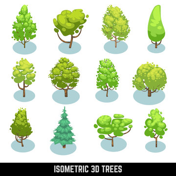 Isometric 3D trees, landscape elements. Natural trees set and plant isometric trees garden. Vector illustration set