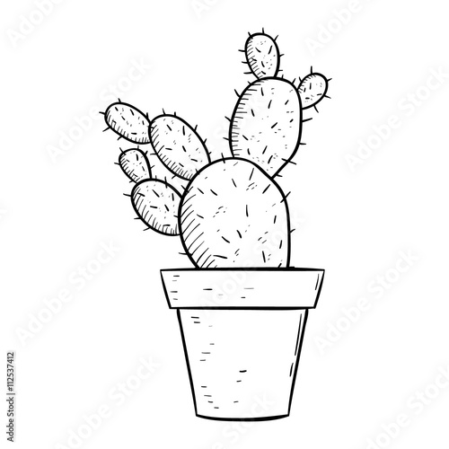 Line Drawing Of Flower Pot : Quot cactus with sketchy or line art style in flower pot