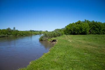 Холодная река в зеленых полях Алтая летом