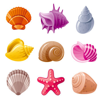 Colorful tropical shells underwater icon set