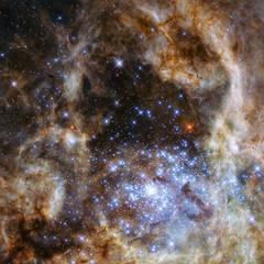 Stars nebula in space