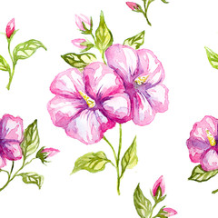 watercolor illustration of a flowers.