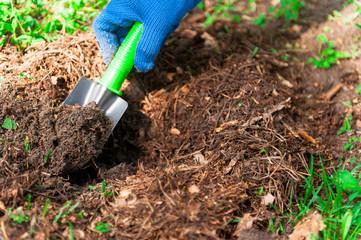 Human arm is doing garden work