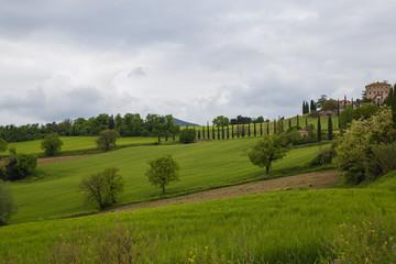 Wall Murals Melon Umbrian countryside
