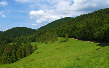 Mountains Pieniny in Slovakia and Poland