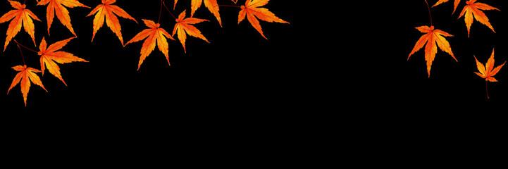 秋 もみじのバナー