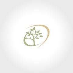 tree swirl logo