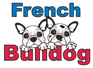 inscription, words, letters, two, couple, together, dog, french, bulldog, breed, background, white, isolated, cartoon, puppy,  animal, muzzle, snout, paws