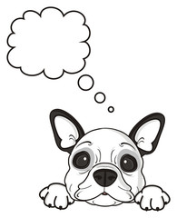 sign, symbol, callout, note, blank, clean, thinking, thoughts, desires, empty, dog, french, bulldog, breed, background, white, isolated, cartoon, puppy,  animal, muzzle, snout, paws