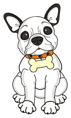 bone, sit, look, collar, dog, french, bulldog, breed, background, white, isolated, cartoon,