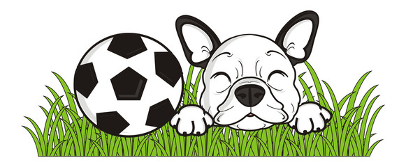 game, ball,  lie, grass, sport, soccer, football, sleep, closed, eyes, dog, french, bulldog, breed, background, white, isolated, cartoon, puppy, muzzle, snout