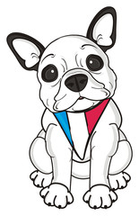 collar, flag, scarf, accessory, sit, look, dog, french, bulldog, breed, background, white, isolated, cartoon,