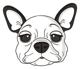 dog, french, bulldog, breed, background, white, isolated, cartoon, puppy, muzzle, snout