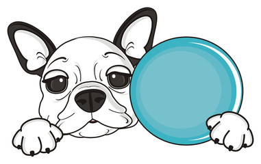 game, ball, round, toy, throw, run, play, dog, french, bulldog, breed, background, white, isolated, cartoon, puppy, muzzle, snout