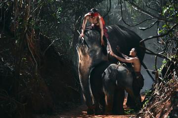 The family of elephants , World Environment Day Fototapete