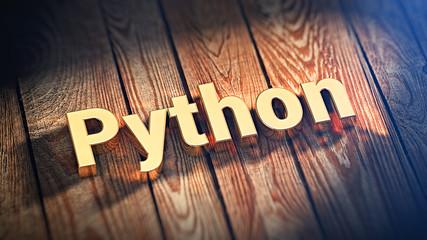 Word Python on wood planks