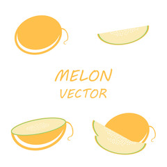 Vector flat melon icons set