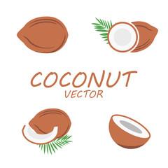 Vector flat coconut icons set
