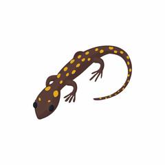 Lizard icon, cartoon style